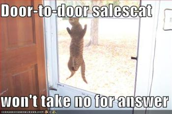 Door to door sales cat.