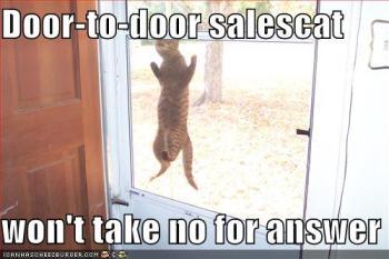 Door to door sales cat.